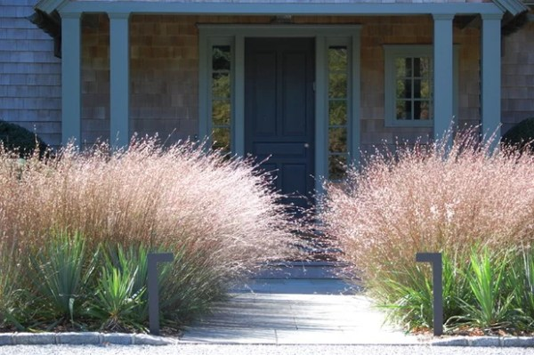 ways ornamental grasses
