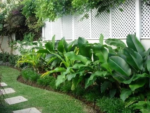 Best Heliconia Landscape Design Ideas & Remodel Pictures Houzz