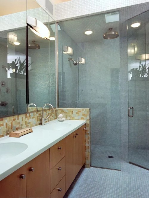 NoThreshold Shower Home Design Ideas Pictures Remodel