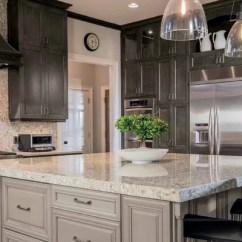 Colored Kitchen Appliances The Honest Dog Food Different Cabinet Styles | Houzz