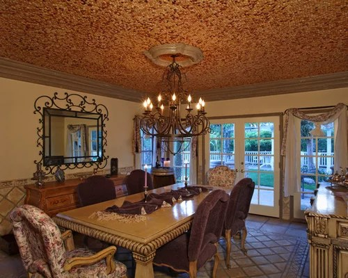 Cork Ceiling Home Design Ideas Pictures Remodel And Decor