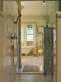 Walk Through Shower Home Design Ideas, Pictures, Remodel