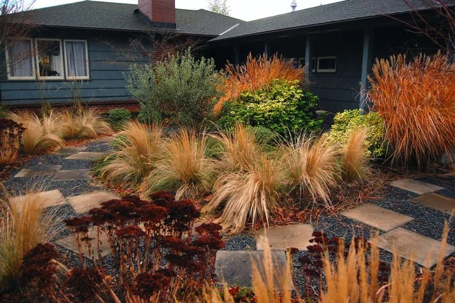 Contemporary Landscape by Garden Stories