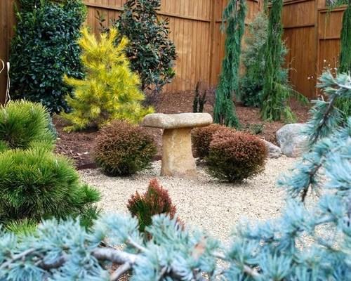 Conifer Garden Houzz