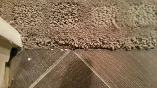 carpet to tile transition is this