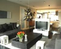 Tv Room Divider | Houzz