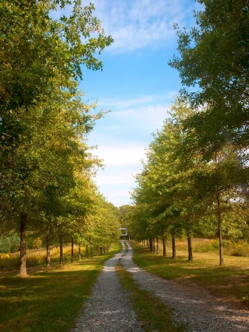 country driveway ideas