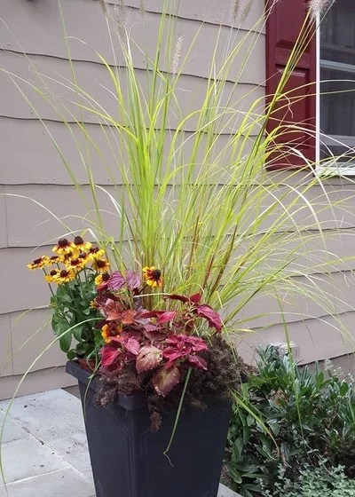Traditional Landscape by Tina M. Yotka - Container Gardens Extraordinaire