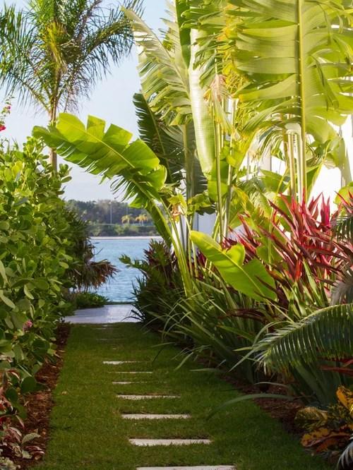 tropical garden home design ideas
