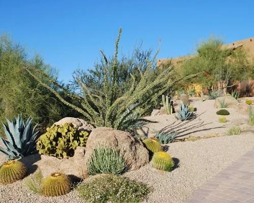 drought tolerant desert landscaping
