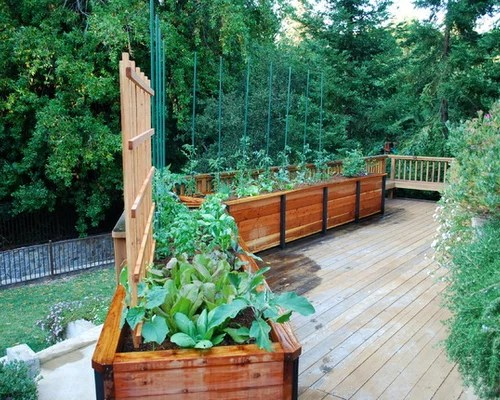Deck Gardening Ideas Pictures Remodel And Decor
