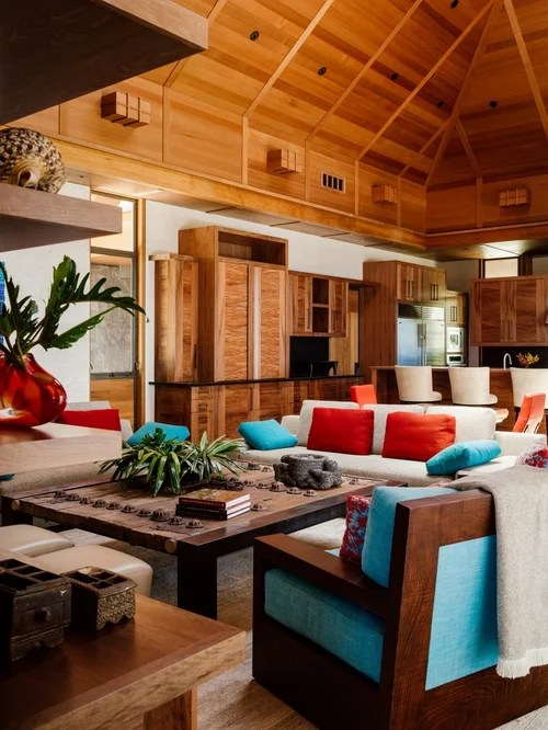 decorate living room with no fireplace modern design pictures tropical ideas, remodels & photos | houzz