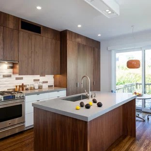 walnut cabinets kitchen farmhouse faucet cabinet houzz minimalist galley eat in photo san francisco with flat panel