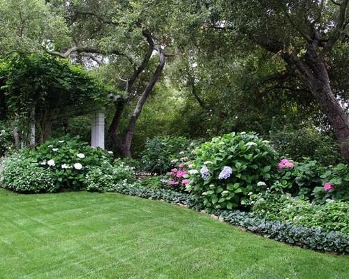 partial shade garden