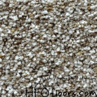 Nylon Or Polyester Carpet For Pets  Floor Matttroy