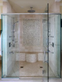 Multi Spray Shower Head Home Design Ideas, Pictures ...