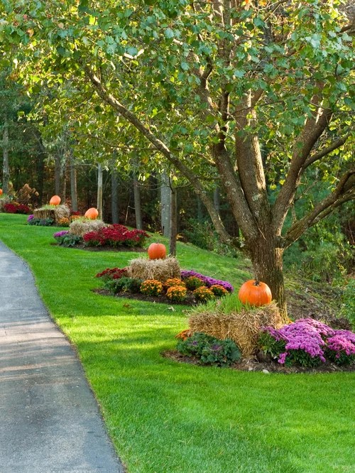 Driveway Landscaping Ideas Houzz