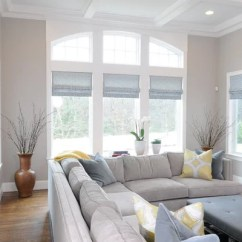 2 Sofa Living Room Ideas Grey Leather Chairs Benjamin Moore Shale Design & Remodel Pictures | Houzz
