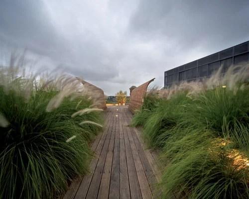 beach grass landscaping home design