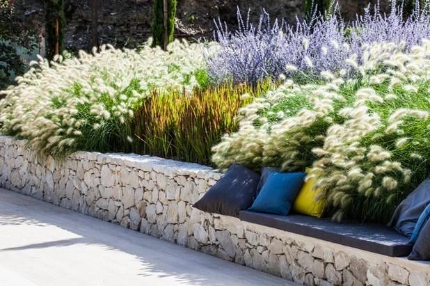 Quelles plantes choisir pour un jardin contemporain