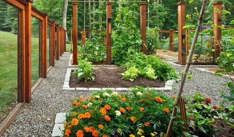 Edible Gardens On Houzz Tips From The Experts