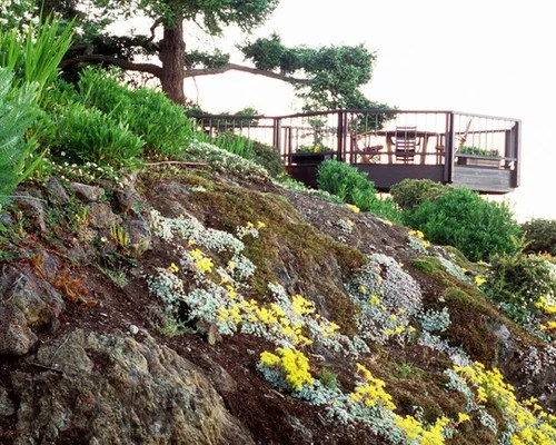 steep slope landscaping ideas