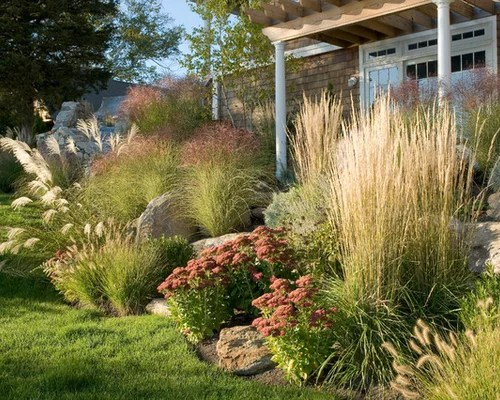 succulents and grasses ideas