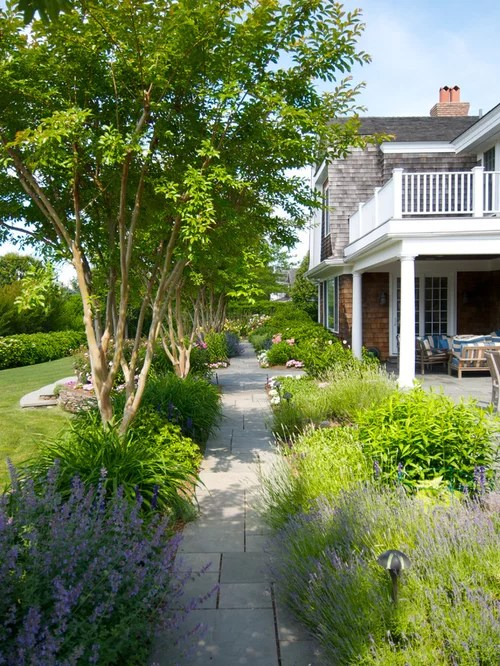 crepe myrtle landscaping home design