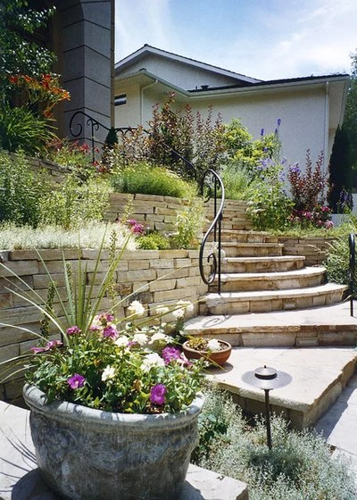 with lawn ideas