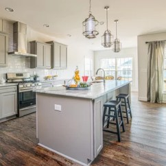 Wood Floors In Kitchen Tall Table And Chairs 75 Most Popular With Gray Cabinets Design Ideas For 2019 Traditional Appliance Example Of A Classic Galley Dark Floor Brown