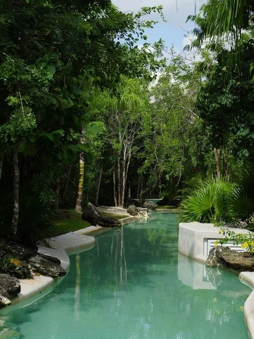 Best Tropical Backyard With Lazy River Pool Design Ideas