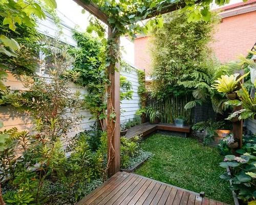 trendy tropical garden design
