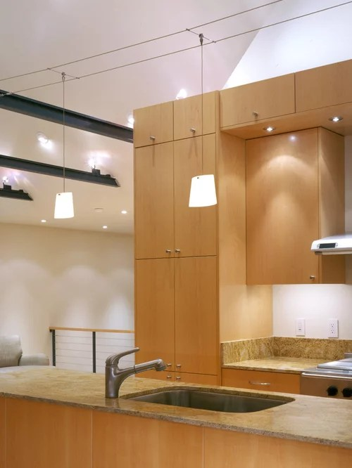 Cable Lighting Design Ideas  Remodel Pictures  Houzz