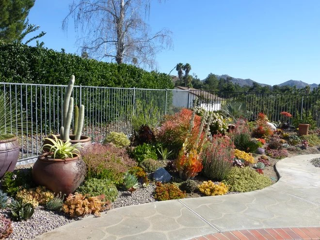 Traditional Landscape by Living Designs By Linda