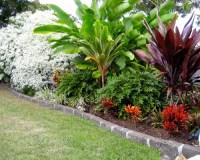 Tropical Full Sun Garden Design Ideas, Renovations & Photos