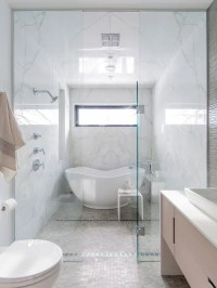 Tub Inside Shower Ideas, Pictures, Remodel and Decor