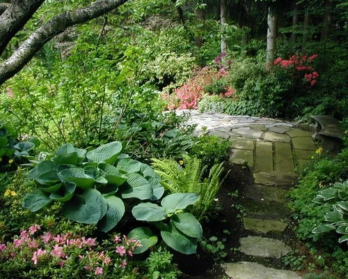 Shade Garden Ideas Pictures Remodel And Decor