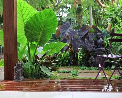 Balinese Garden Design Houzz