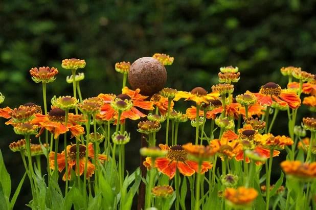 7 Gartenideen, Die Im August Freude Machen