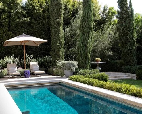 pool landscaping design ideas &