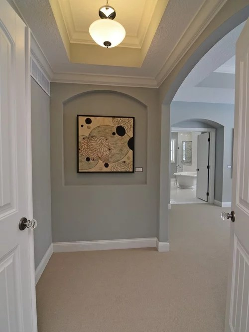 Magnetic Gray  Houzz
