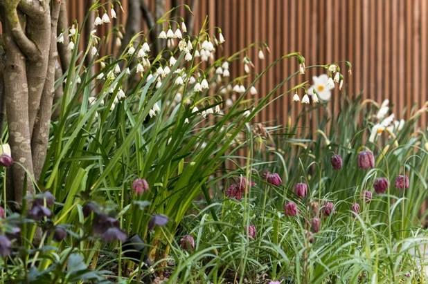7 Gartenideen, Die Im April Freude Machen