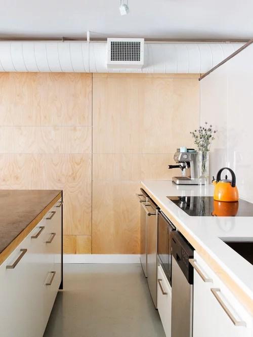 Best Birch Plywood Design Ideas Amp Remodel Pictures Houzz