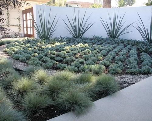 Dry Garden Houzz