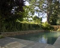 An Elegant Backyard Pool