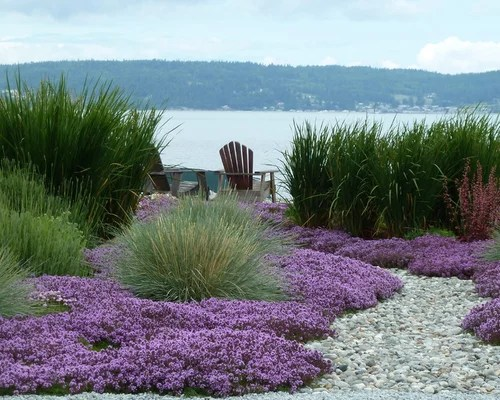 beach style landscaping