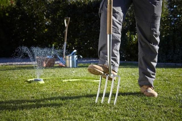 Современный  Outdoor Living, Gardening and Irrigation