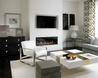 Best Contemporary Fireplace Design Ideas & Remodel ...