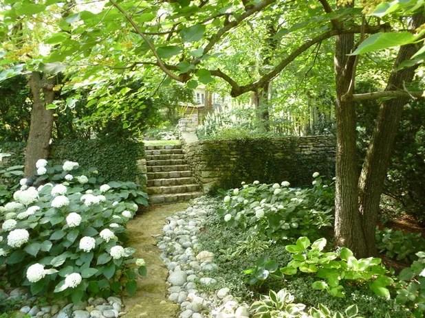 9 conseils de pro pour apprivoiser les zones dombre du jardin