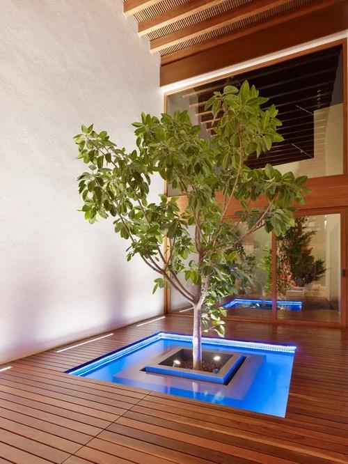 indoor landscaping home design